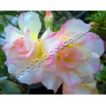 Растение Adenium Obesum Desert rose TRIPLE LUCIOUS KISSES